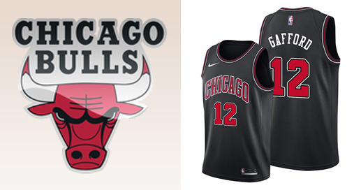 Camisetas nba Chicago Bulls